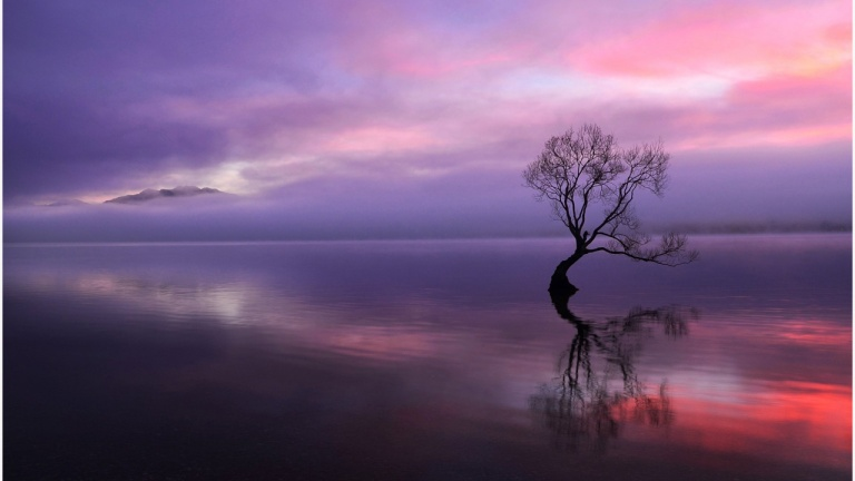 Water and sky line - trees reflected Wallpapers HD 1280x720