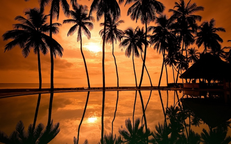sunset-hawaii-beach-1440x900