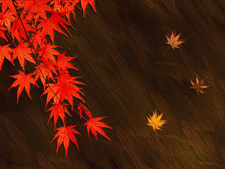 Image: The Autumn Leaves by Tsukku