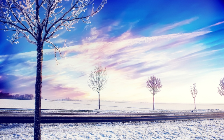 snow_winter_trees-wide