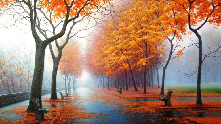 http://coolbackgrounds.ca/wp-content/uploads/2013/11/beautiful-nature-autmn-trees-leaves-orange-falling-off.jpg