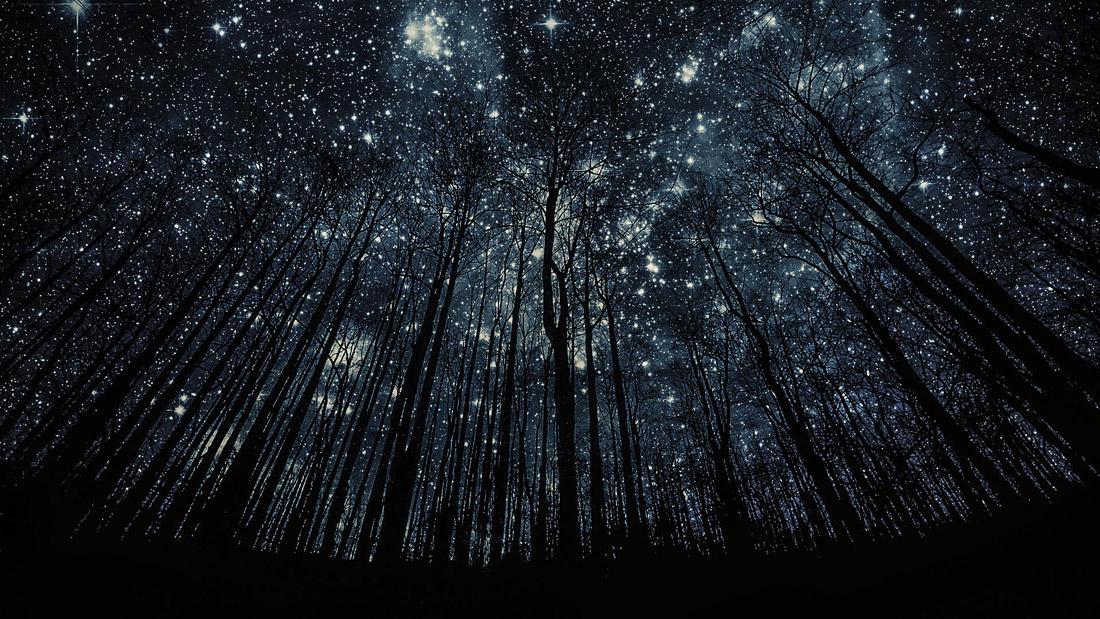 http://www.dominicanu.ca/sites/default/files/basic_images/Starry-night-Geneva.jpg