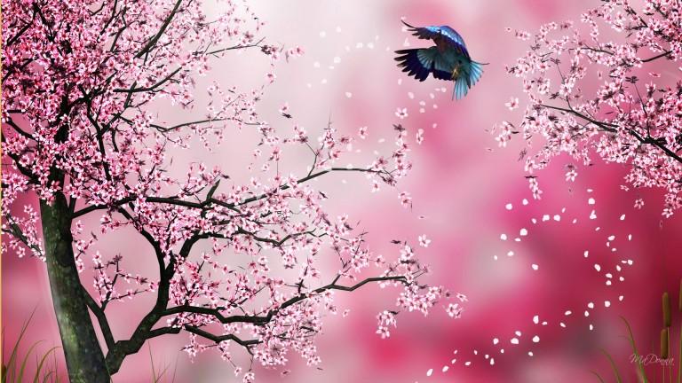 Image: http://pichost.me/1752871/