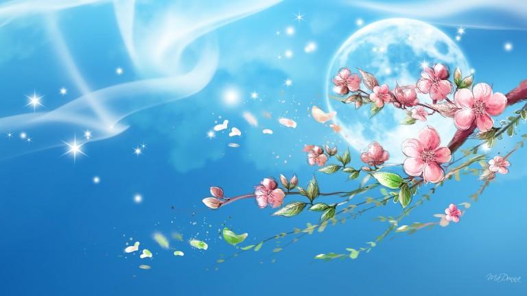 Image: http://hdwallpaper.freehdw.com/0005/3d-abstract_hdwallpaper_sakura-sky_41916.jpg