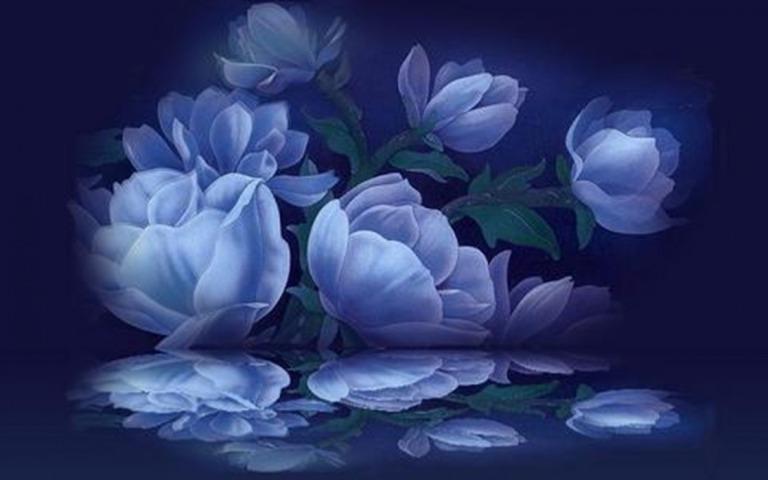 Image: http://www.desktopnexus.com/dl/inline/1190087/1440x900/6di81dgamb2enkpofd8lojrc4754af88d8d6a3f