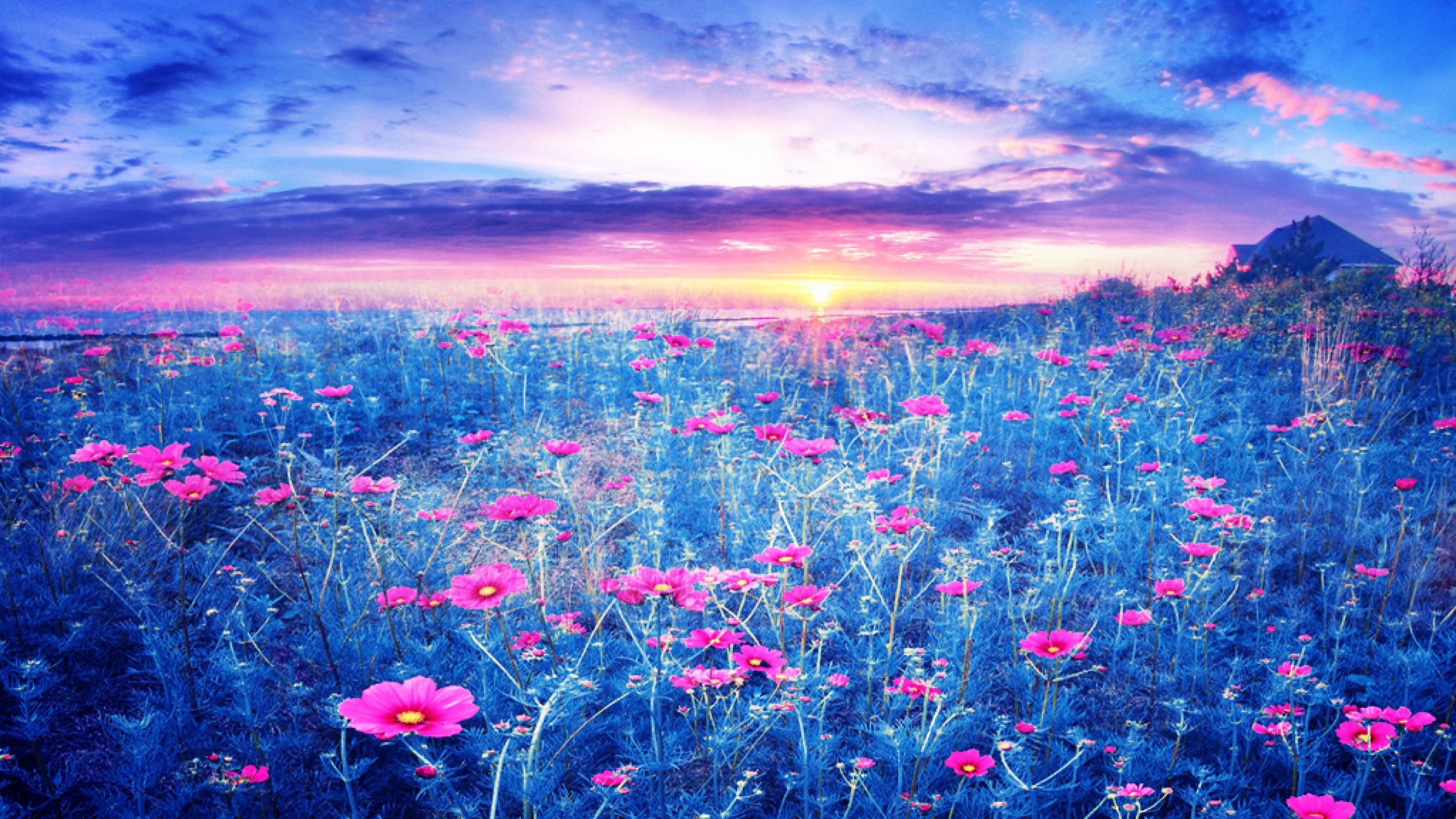 Image: http://abstract.desktopnexus.com/get/1313162?t=m9lre6eocjbpci5b2hafse72o754aa2a95e36d2