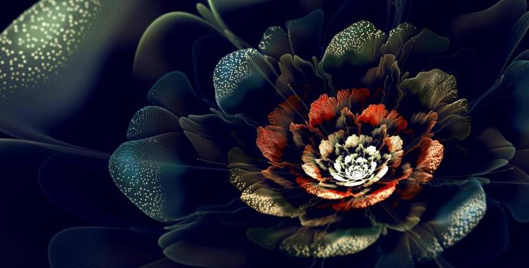 Image: http://1hdwallpapers.com/wallpapers/black_velvet.jpg