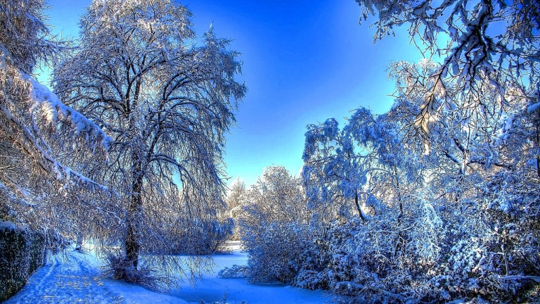 Image: http://www.widescreenhdwallpapers.com/wp-content/uploads/2012/12/Snow-is-Every-Where-Winter-Wallpaper.jpg