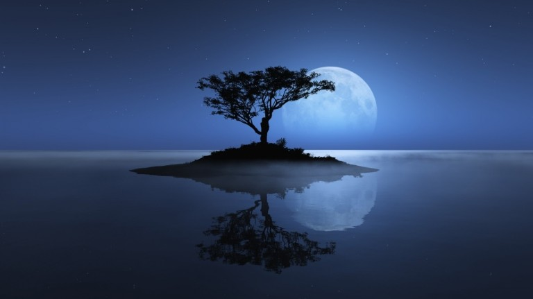 Image: http://www.listofimages.com/wallpapers/2012/05/tree-sea-moon-reflection-island-stars-night-water-ocean-shadownature-485x728.jpg
