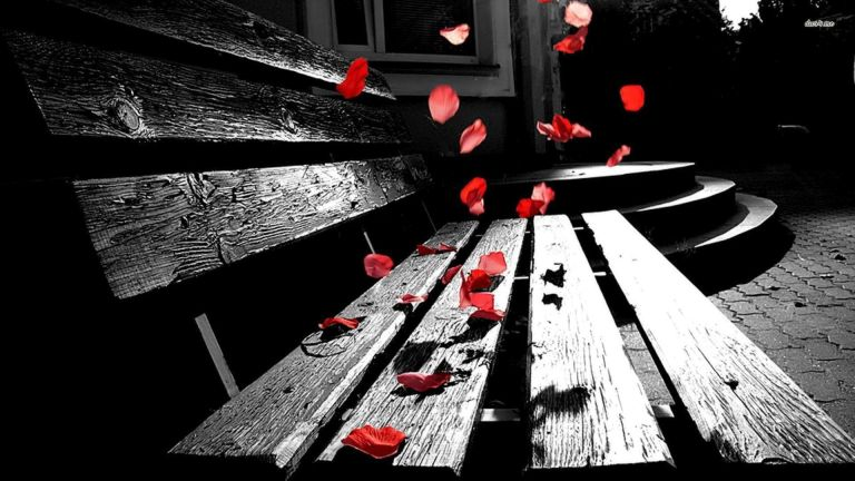 Image: http://www.desktopwallpapers4.me/photography/rose-petals-falling-on-a-bench-29393/