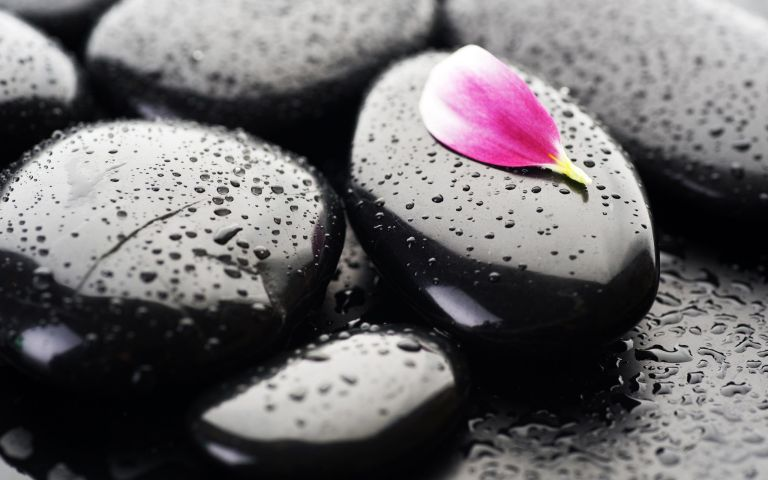 Image: http://topwalls.net/wp-content/uploads/2012/02/pink-flower-petal-on-black-stones-.jpg