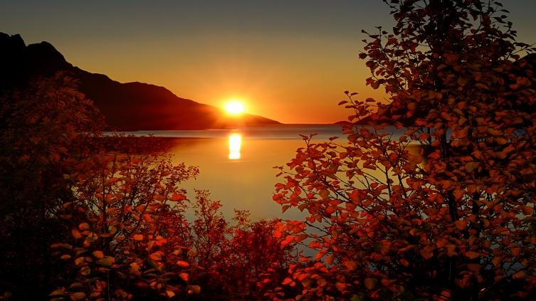 Image: http://free.wallpaperbackgrounds.com/earth/sunrise/166569-24184.jpg