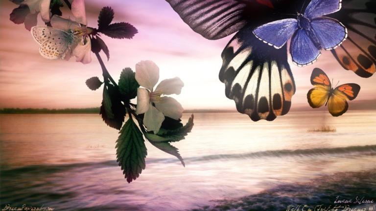 Image: http://www.desktopnexus.com/dl/inline/97013/2560x1440/m9lre6eocjbpci5b2hafse72o7550ce731ba7e9