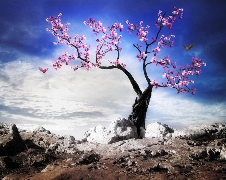 Image: http://wallpapersinhq.com/images/big/hope-1392228.jpg