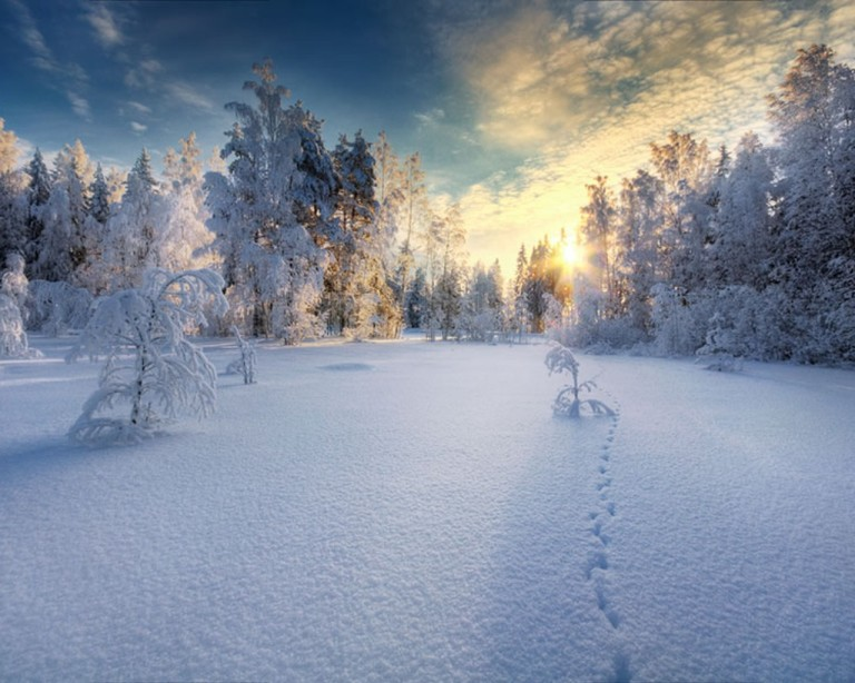 Image: http://www.zastavki.com/pictures/originals/2013/Nature___Sundown_Sunset_in_the_white_snow-covered_forest_046390_.jpg