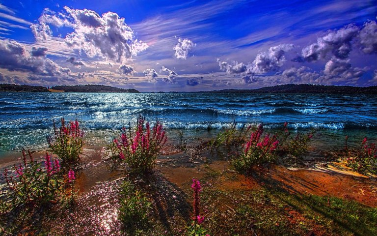 146526__lake-pond-excitement-the-mountains-dal-horizon-sky-clouds-beach-flowers_p