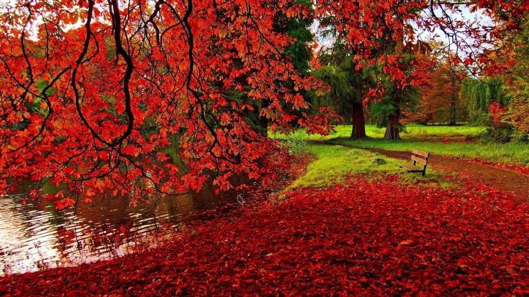 Image: http://s.picsfab.com/static/contents/images/c/b/6/1221a0aa1b6f6c990c2a02f1b1f28.jpg