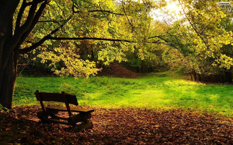 autumn_bench_wallpaper_a6cdd