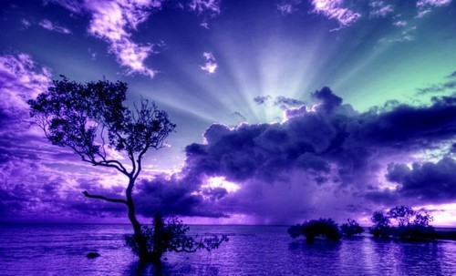 beautiful-blue-nature-night-purple-Favim.com-191864