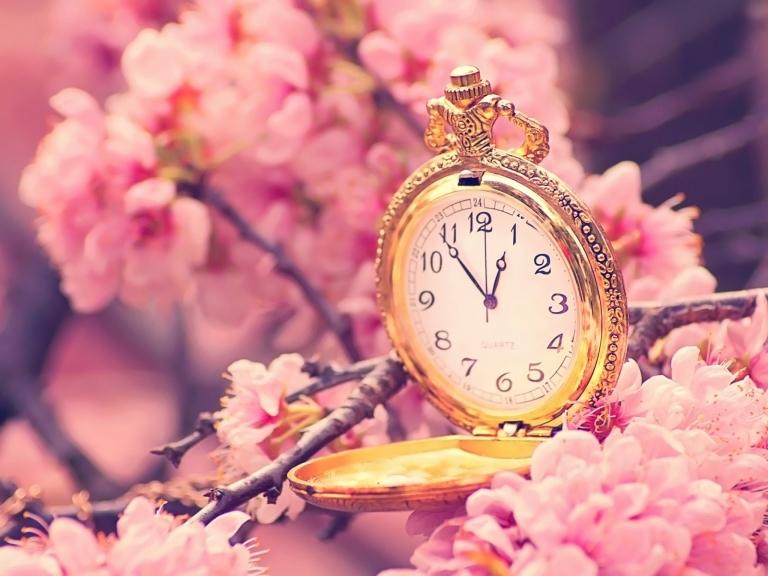 cherry_blossoms_clocks_1600x1200_wallpaper_Wallpaper_2560x1920_www.wall321.com