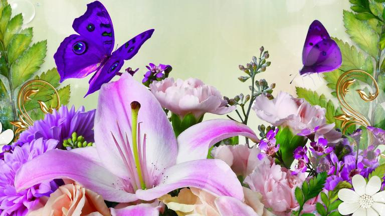 lilies_spring_flowers