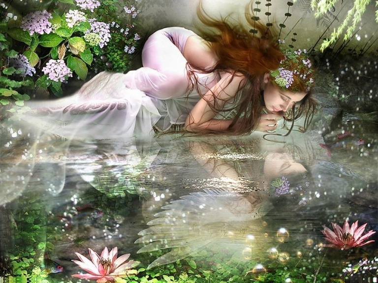 my_reflection_flower_water_fantasy_abstract_hd-wallpaper-1591004