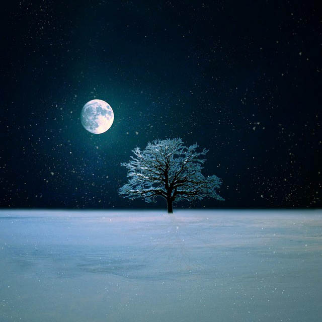 winter_night_live_wallpaper_by_kokoszkaa-d6y64wm