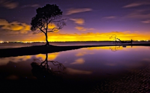 Beautiful-Gold-Purple-Evening