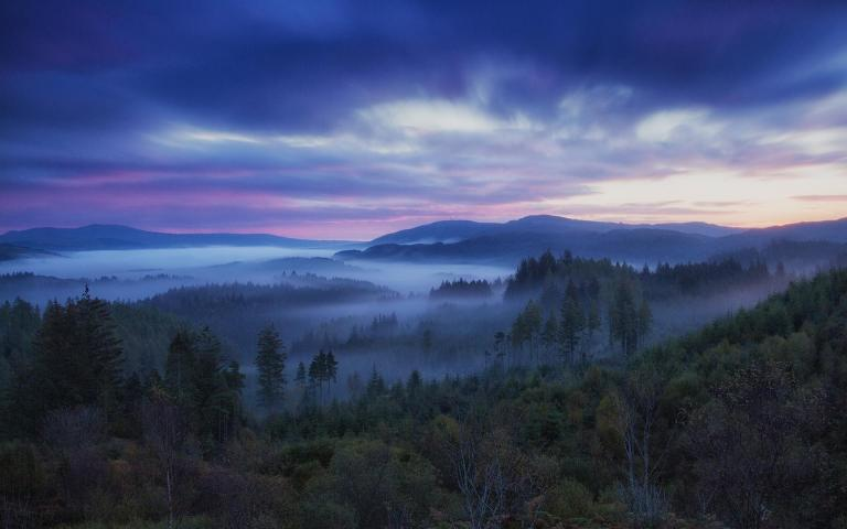 scotland-hills-fog-trees-sky