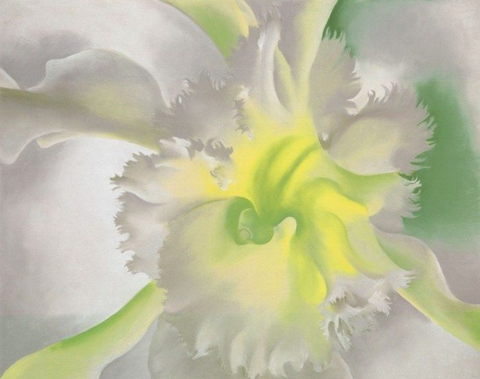 Image: Georgia O'Keeffe's An Orchid, 1941.
