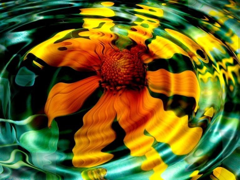 Flor refletida