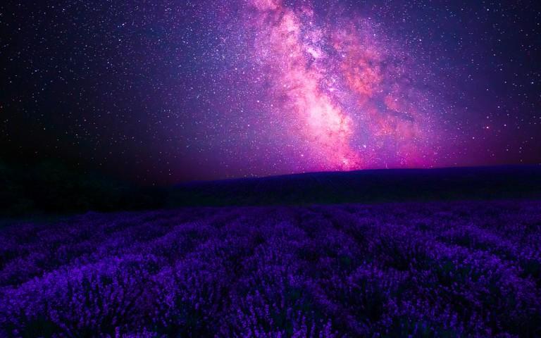galaxy-lavender-forgotten