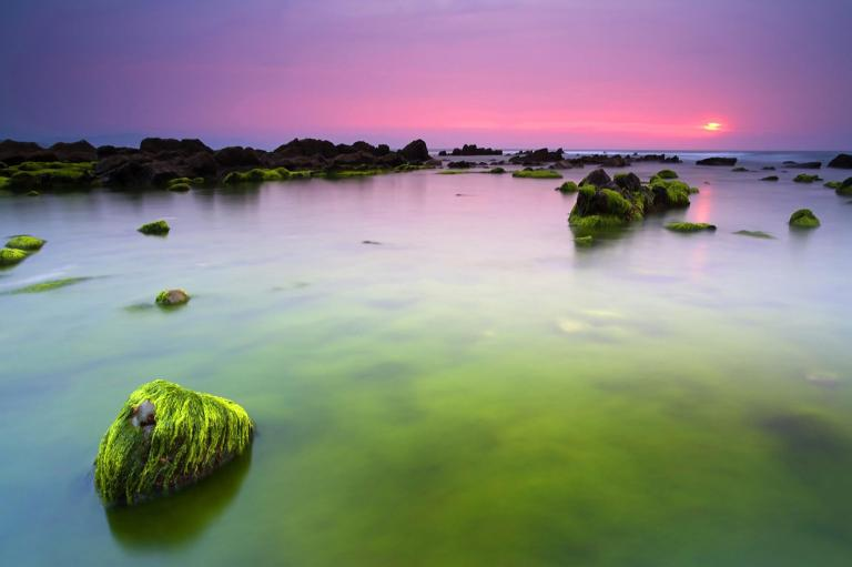 pink_sunrise