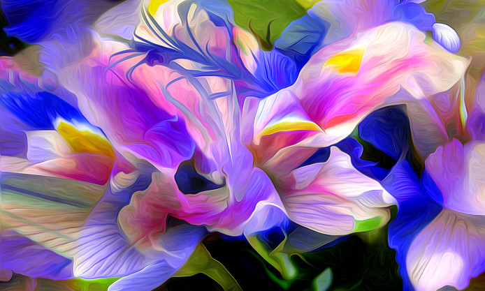 render-flower-petals-abstract-colored-water-move-background-694x417