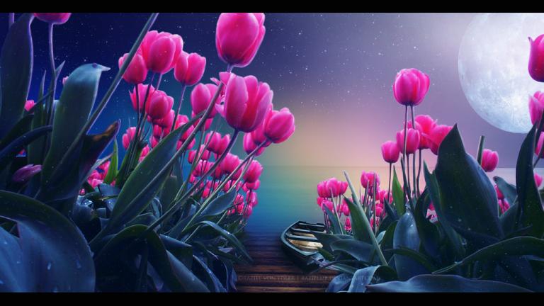 tulips_island_by_razielmb-d7cskx6