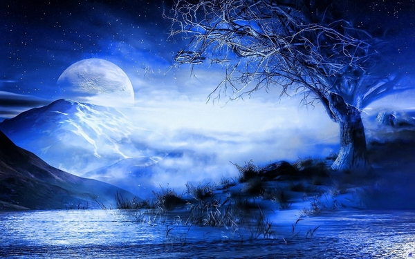 blue nature trees night moon fantasy art_wallpaperswa.com_53