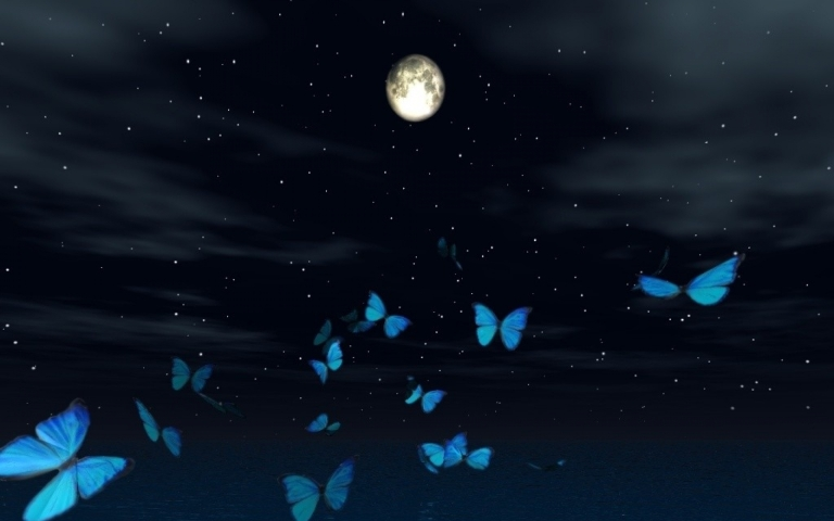 blue_butterflies_moonlight_but_1920x1200_wallpaperhi-com