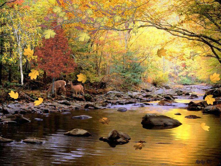 Golden Waters WP