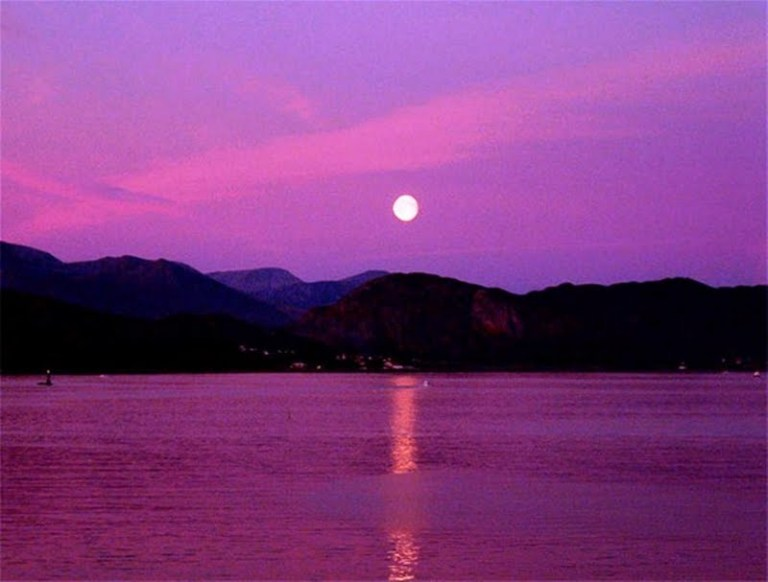 moonlight-sonota-186620