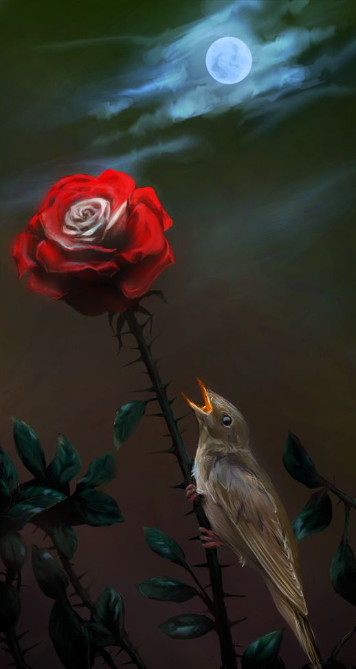 The Nightingale and the Rose by Parfet.deviantart... on @deviantART