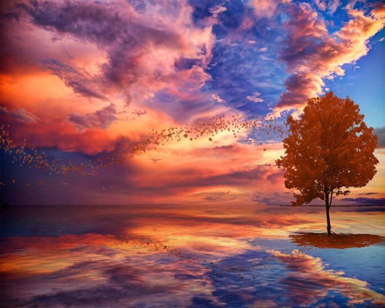 autumn_sunset_tree_fantasy_clouds_abstract_hd-wallpaper-1604620