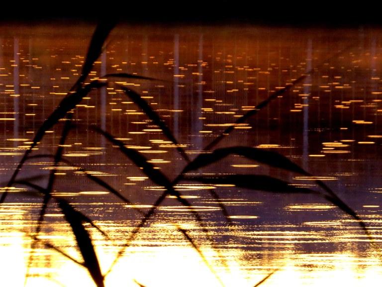 rain-desktop-background-621629