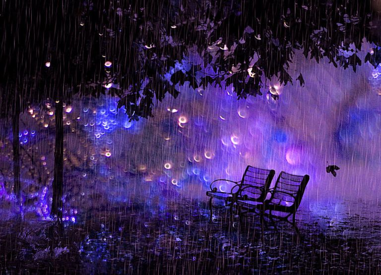 rain_nature_purple_bench_hd-wallpaper-961805