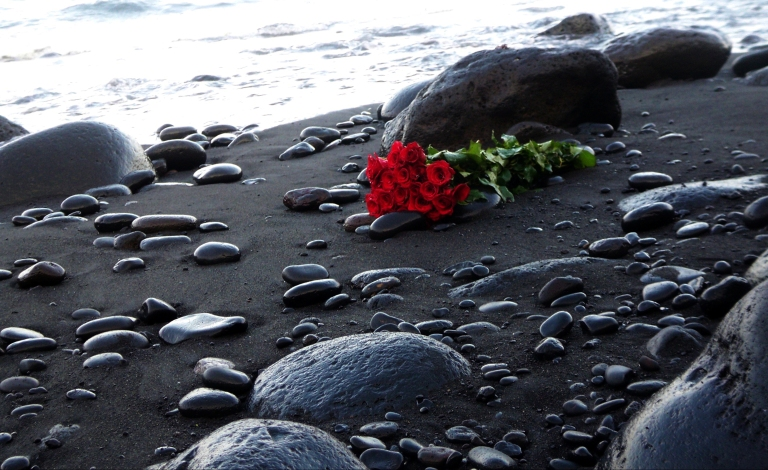 roses_beach_red_shore_pebbles_bouquet_hd-wallpaper-1623827