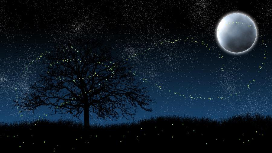 Image: Twilight Fireflies lyrics free ©2011-2015 Velverlicious