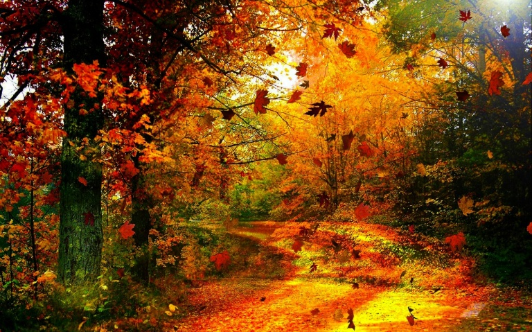 Autumn-Leaves-Falling-Wallpaper