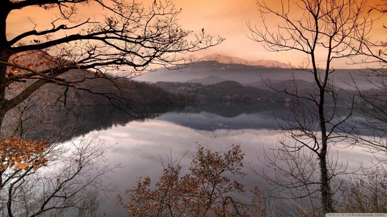 bare_forest_hd_fog_lake_mist_scene_nature_hd-wallpaper-1616602