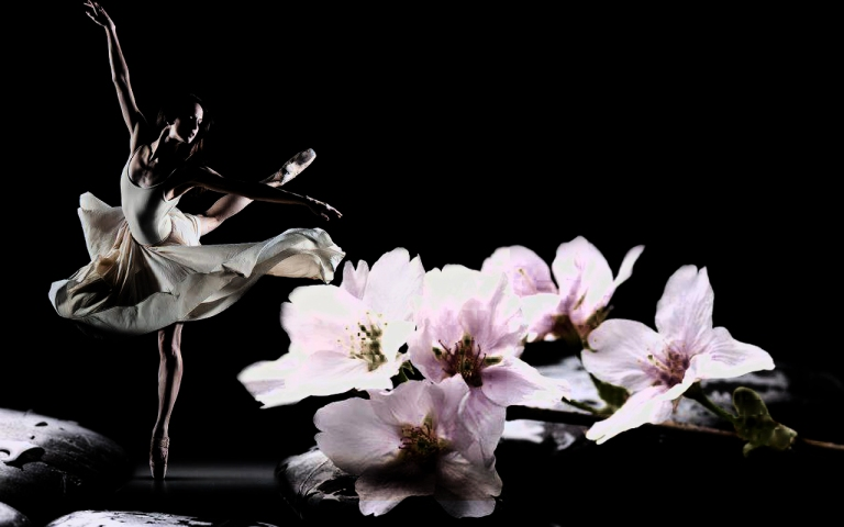 Free-Beach-With-Flowers-Nature-Ballet-Dancer-Wallpaper