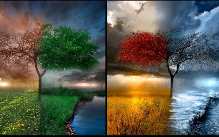 four-seasons-wallpaper