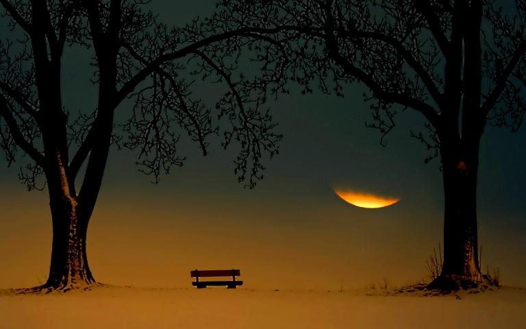 孤独的长椅